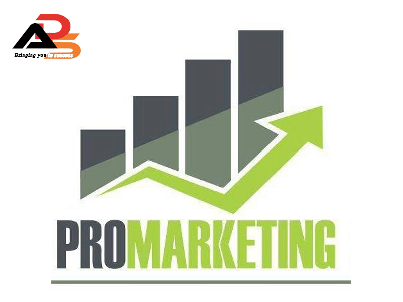 Khóa học Pro Marketing Online